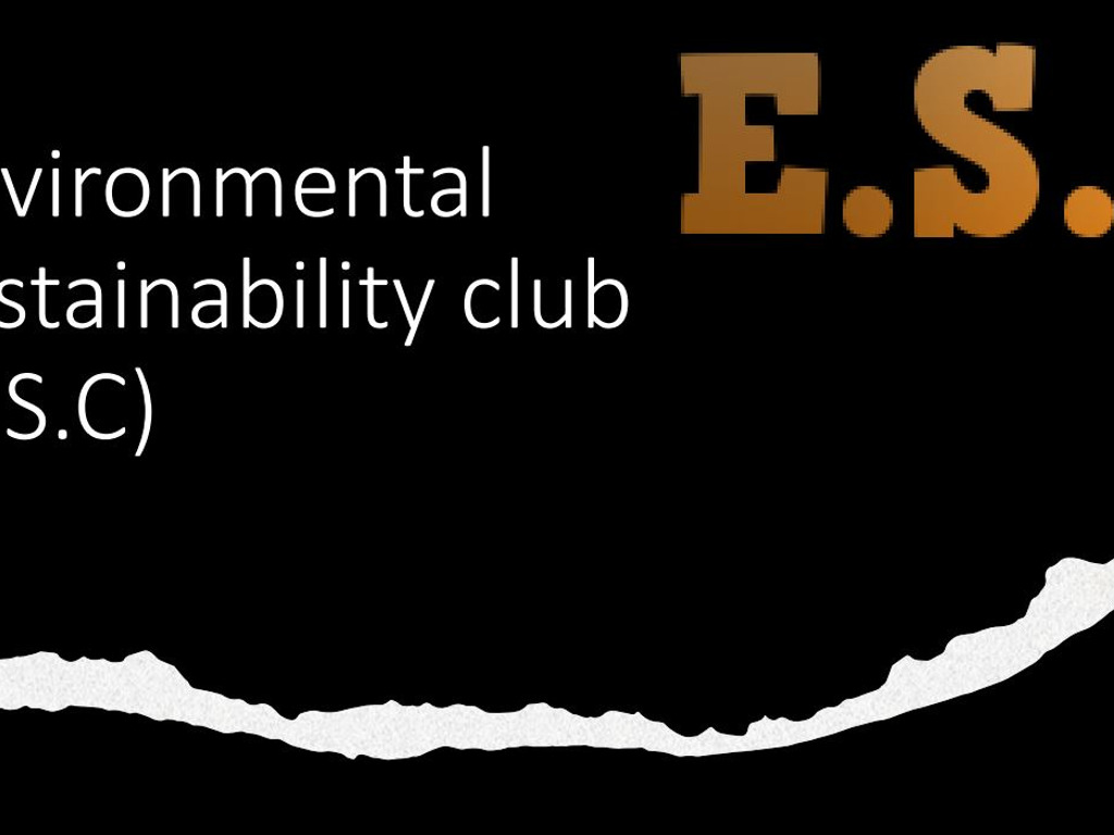 Environmental Sustainability Club created by Faith and Imogen