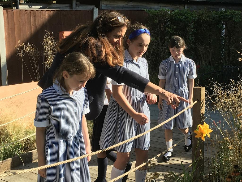RHS Flower show garden relocates to Queen's