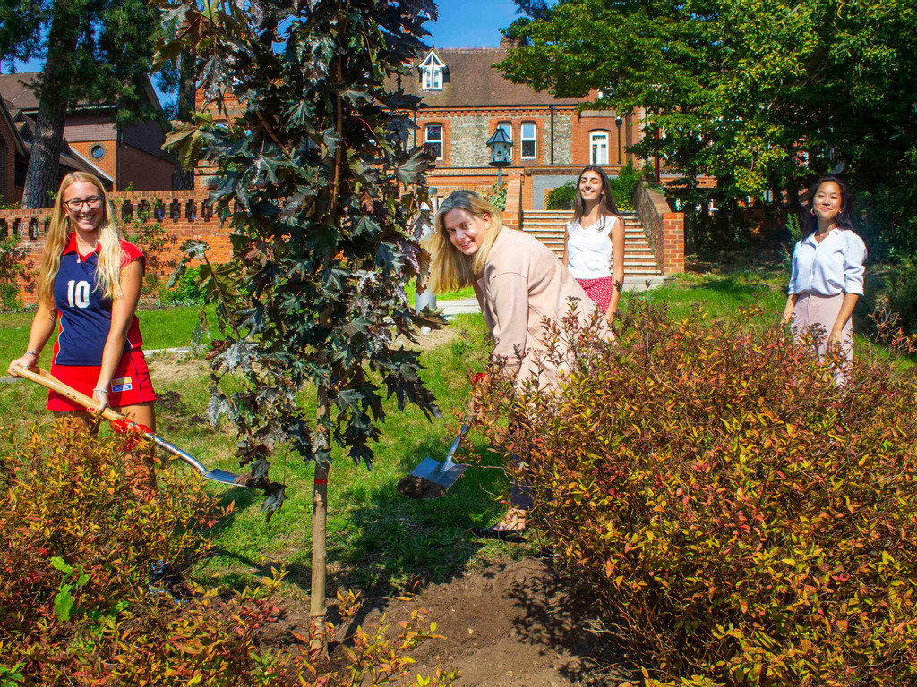 New trees planted by Head, Liz Hewer and the Head Girls to grow the St George's Arboretum