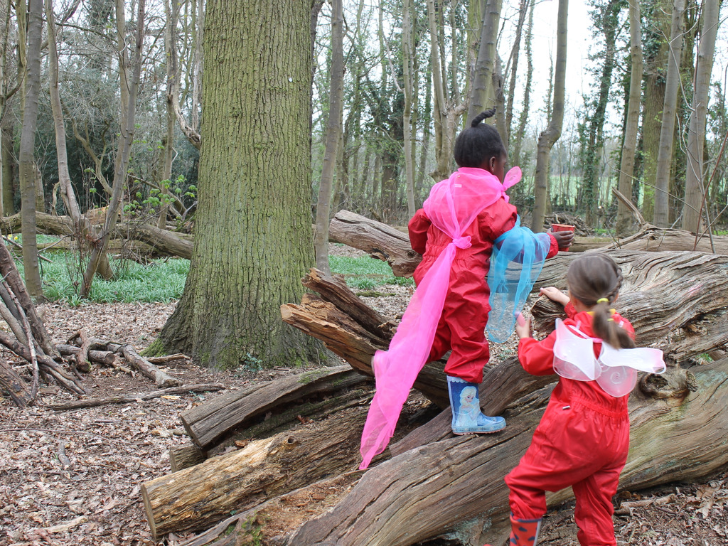 Forest School helps children to develop social skills and confidence